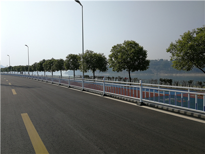 四川宜宾市南溪区环长江大道ppp项目道路护栏(2)