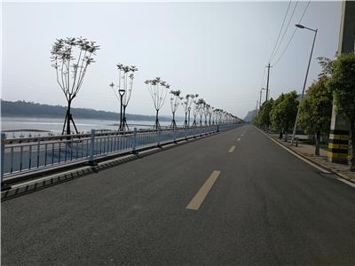 朝阳升道路护栏02.jpg