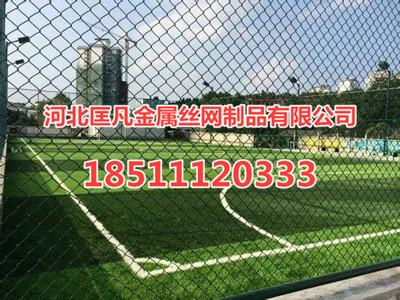 42071490412043.jpg